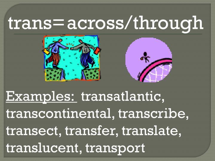 trans=
