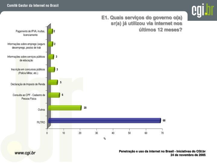 E1. Quais serviços do governo o(a) sr(a) já utilizou via internet nos últimos 12 meses?