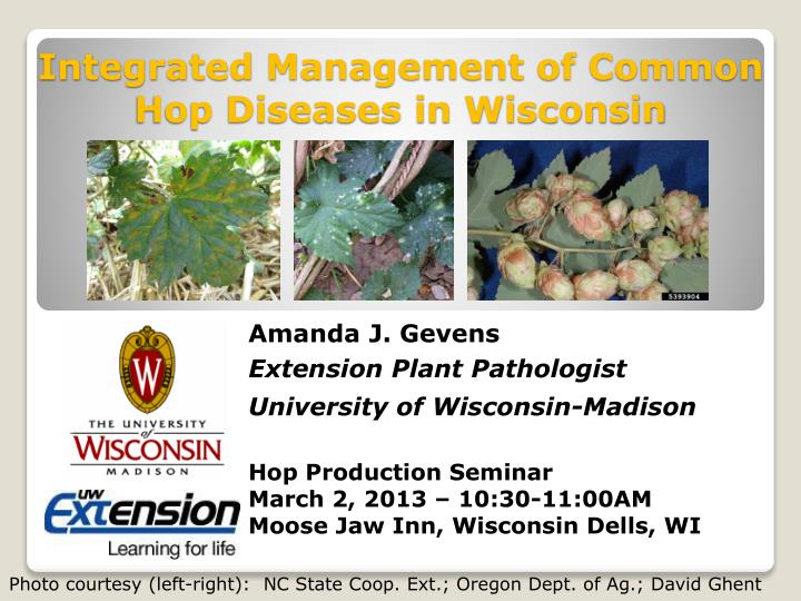 integrated management of common hop diseases in wisconsin n.