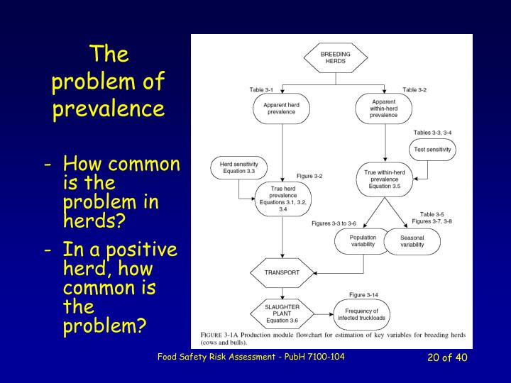 The problem of prevalence