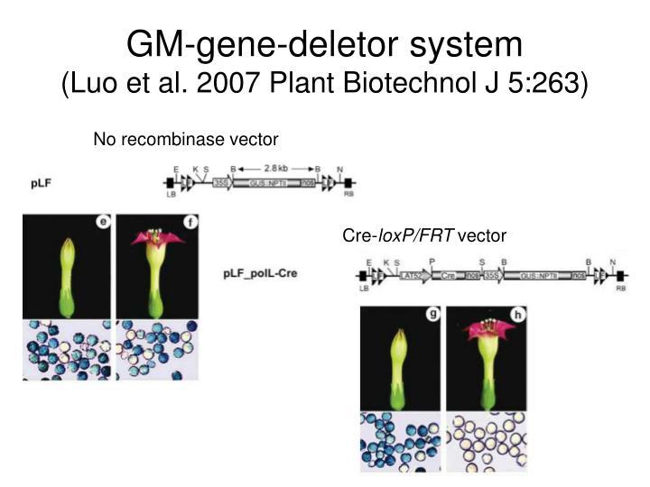 GM-gene-deletor system