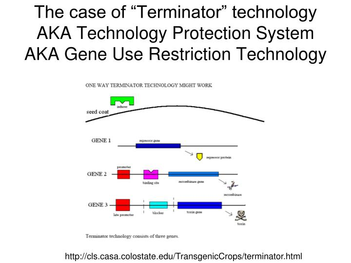 """The case of """"Terminator"""" technology"""