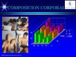 composicion corporal1