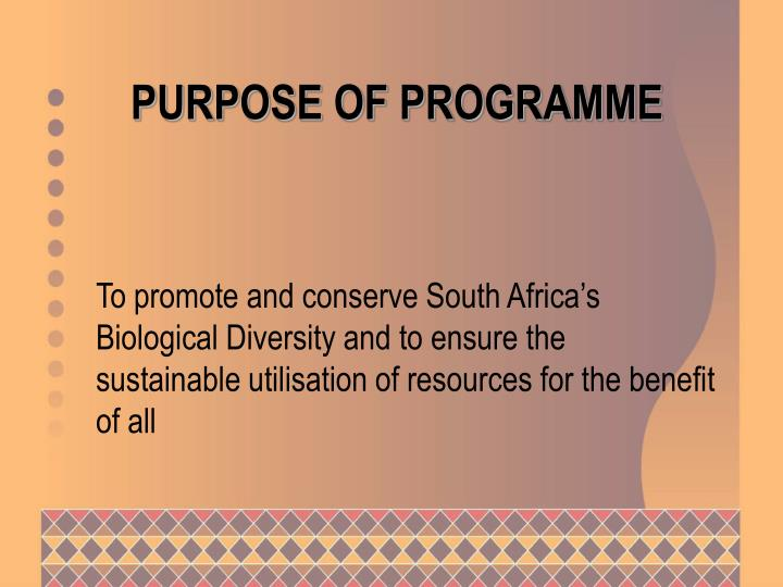 Purpose of programme