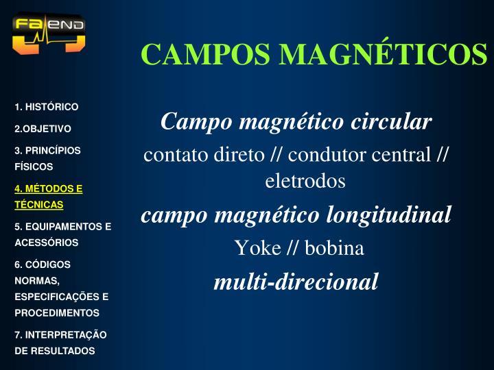 Campo magnético circular