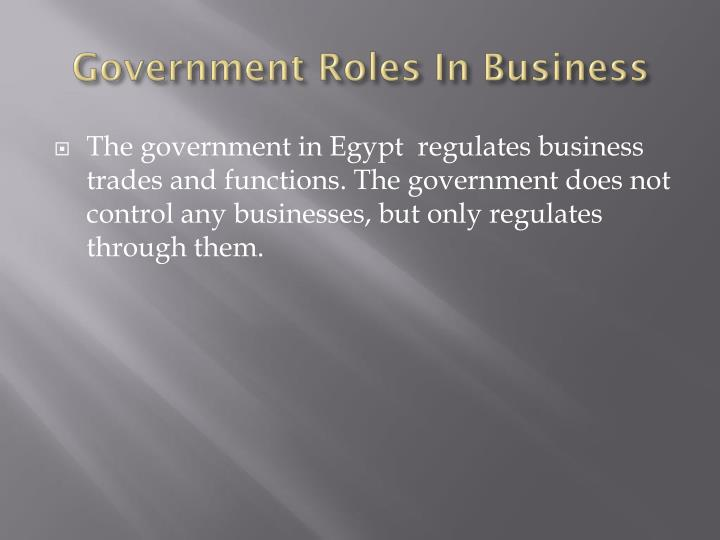 Government roles in business