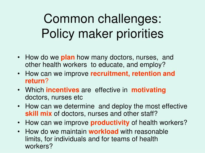Common challenges policy maker priorities
