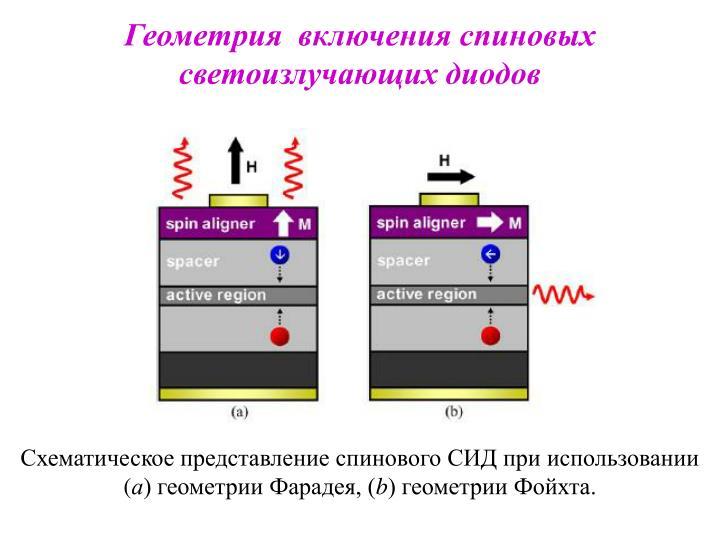 Геометрия  включения спиновых светоизлучающих диодов
