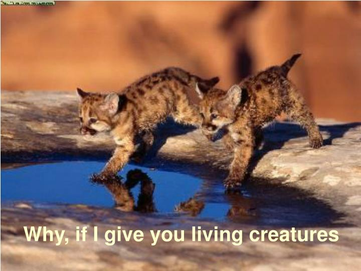 Why, if I give you living creatures