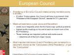 european council1