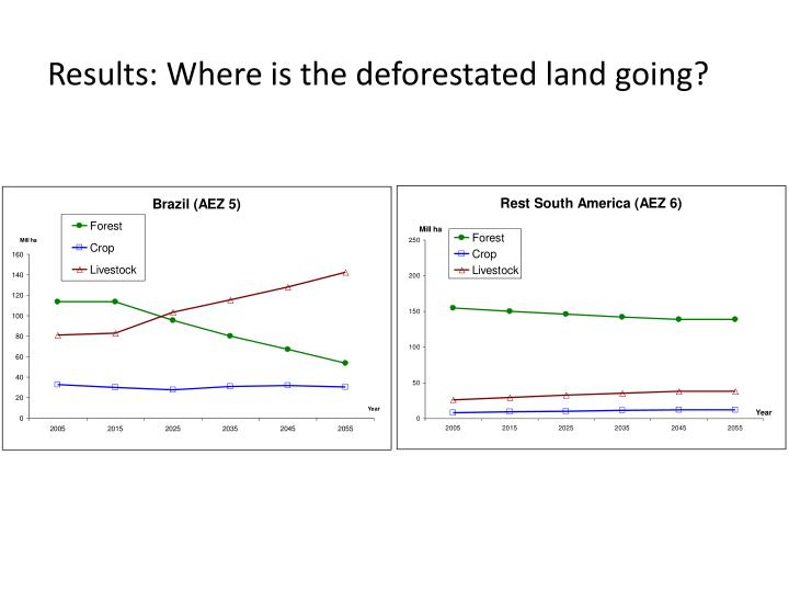 Results: Where is the deforestated land going?