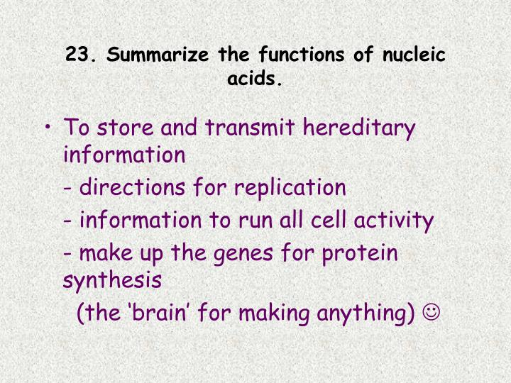 23. Summarize the functions of nucleic acids.