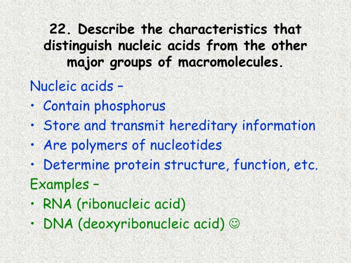 22. Describe the characteristics that distinguish nucleic acids from the other major groups of macromolecules.
