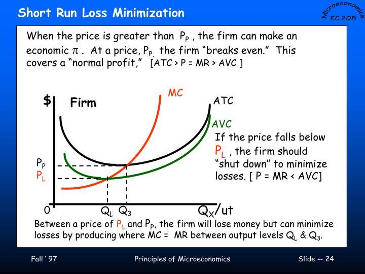 Short Run Loss Minimization