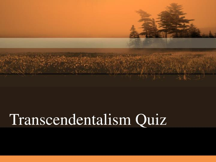 views transcendentalism versus puritanism looking sinners