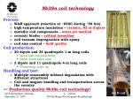 nb3sn coil technology
