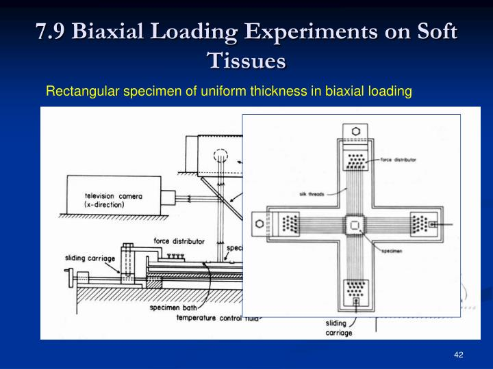 7.9 Biaxial Loading Experiments on Soft Tissues