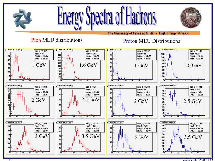 Energy Spectra of Hadrons