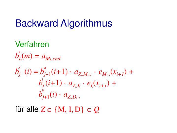 Backward Algorithmus