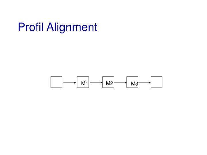 Profil Alignment