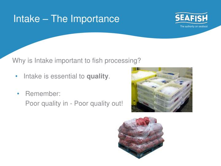Intake – The Importance