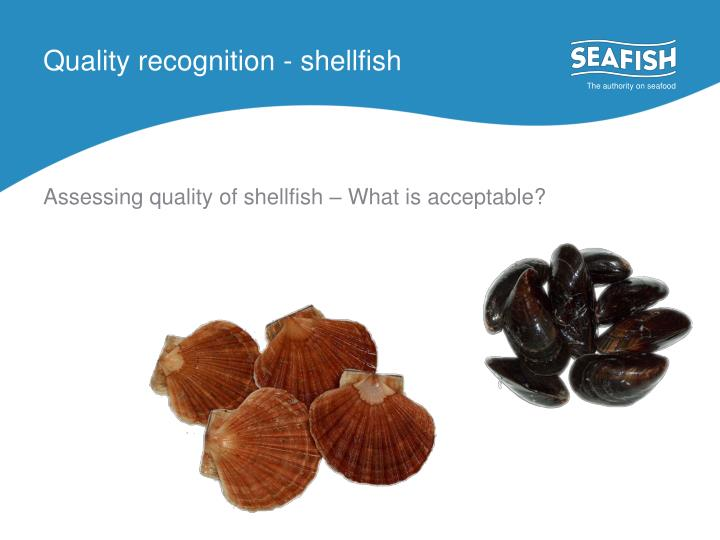 Quality recognition - shellfish
