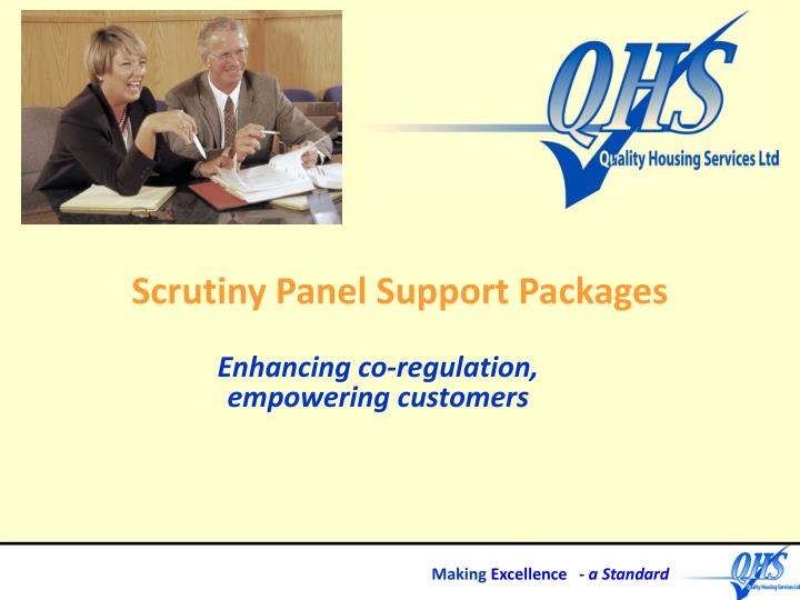 scrutiny panel support packages