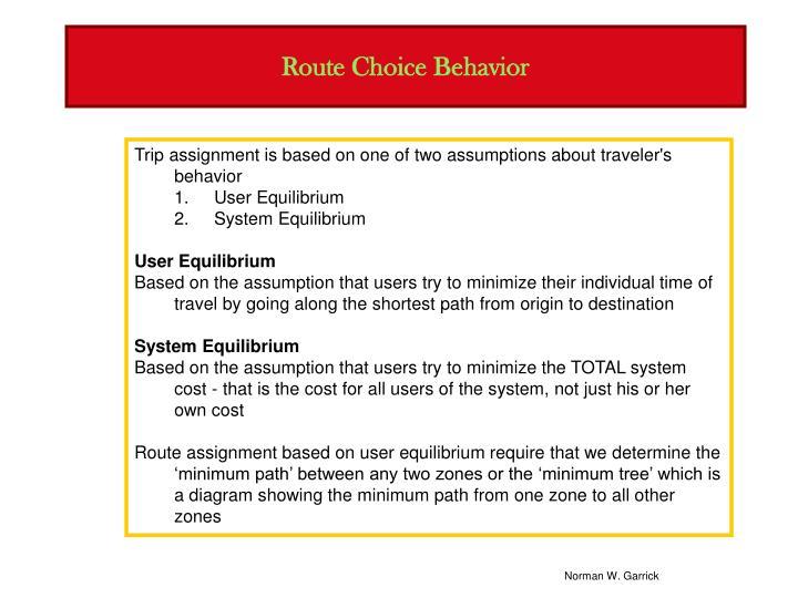 Route Choice Behavior