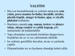 yalitim2