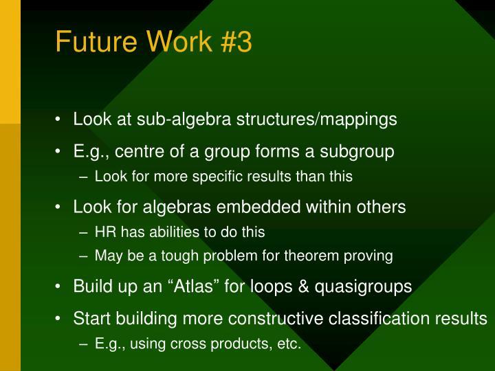 Future Work #3