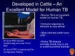 developed in cattle an excellent model for human tb