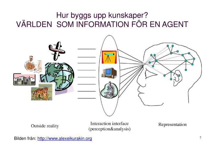 Hur byggs upp kunskaper?