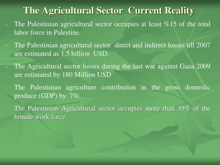 the agricultural sector current reality n.