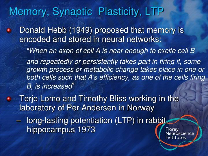 Memory, Synaptic  Plasticity, LTP