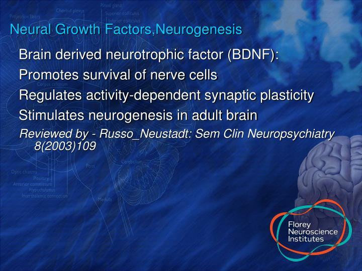 Neural Growth