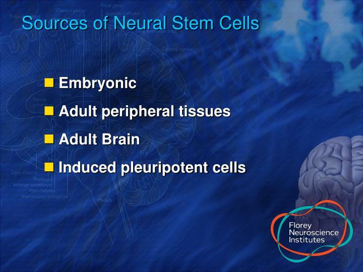 Sources of Neural Stem Cells