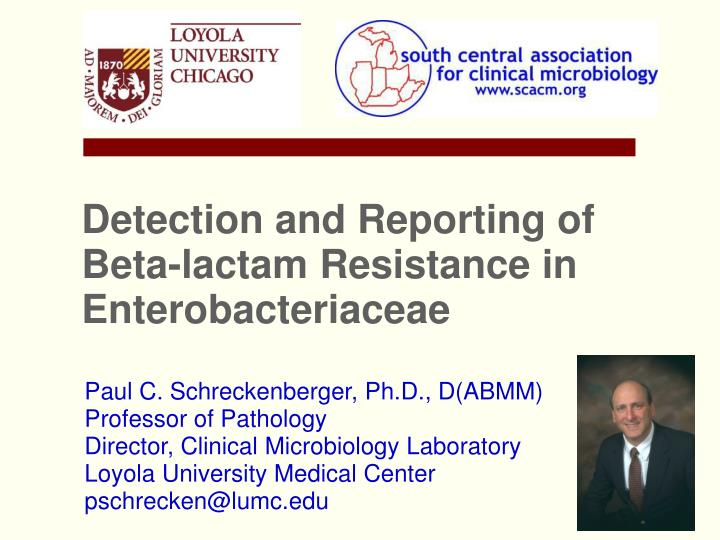 detection and reporting of beta lactam resistance in enterobacteriaceae n.