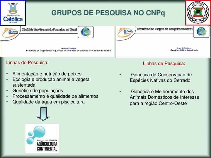 GRUPOS DE PESQUISA NO CNPq