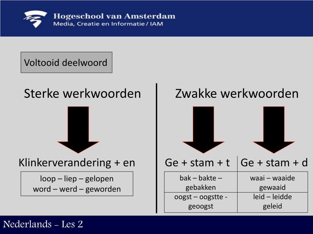 PPT - Nederlands - Les 2 PowerPoint Presentation - ID:6621325