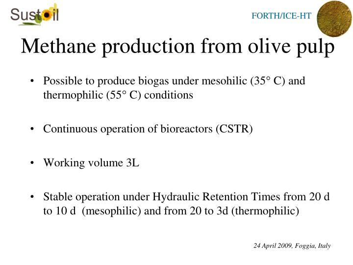 Methane production from olive pulp