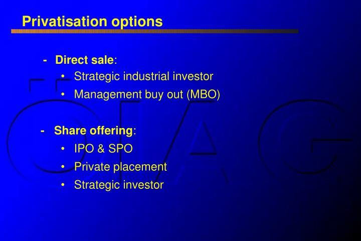 Privatisation options