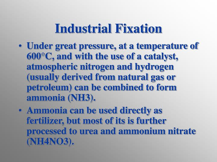 Industrial Fixation
