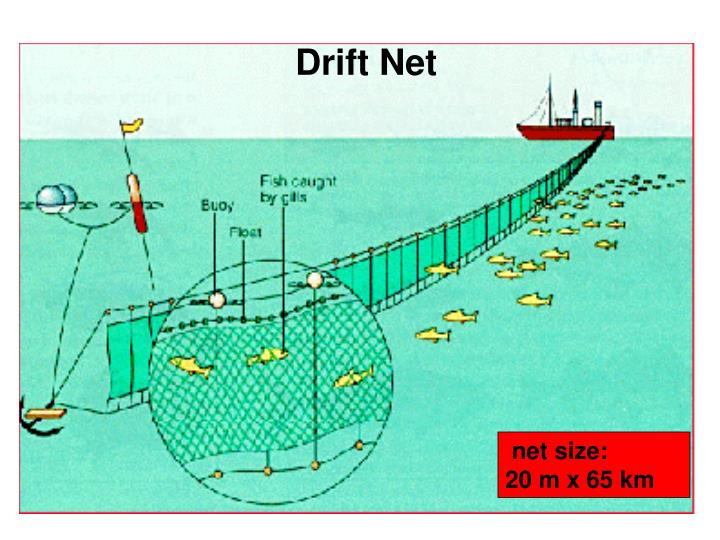 Drift Net