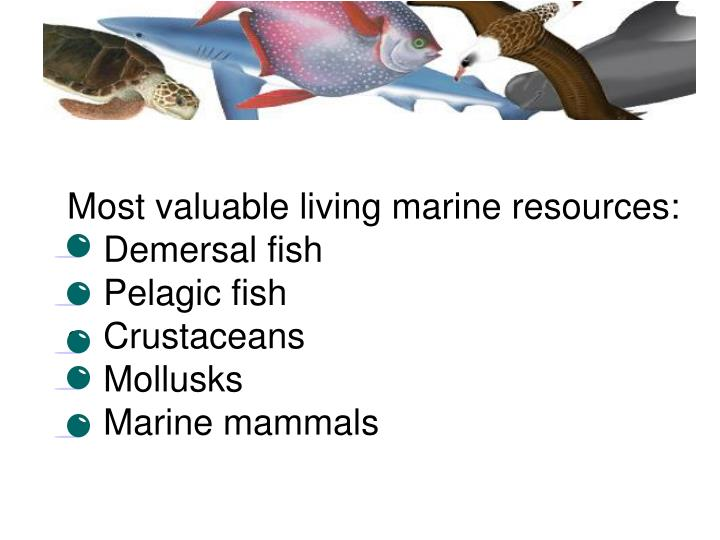 Most valuable living marine resources:
