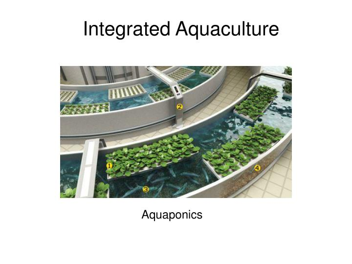 Integrated Aquaculture