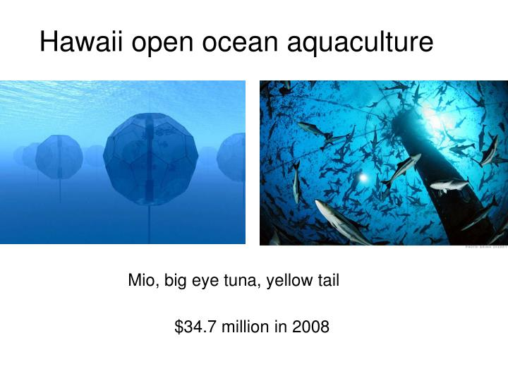 Hawaii open ocean aquaculture