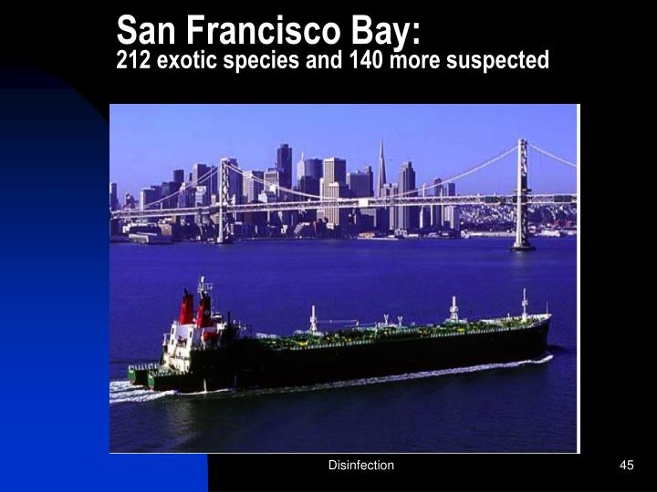 San Francisco Bay:
