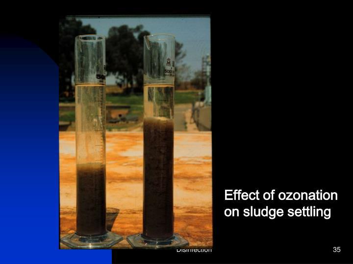 Effect of ozonation
