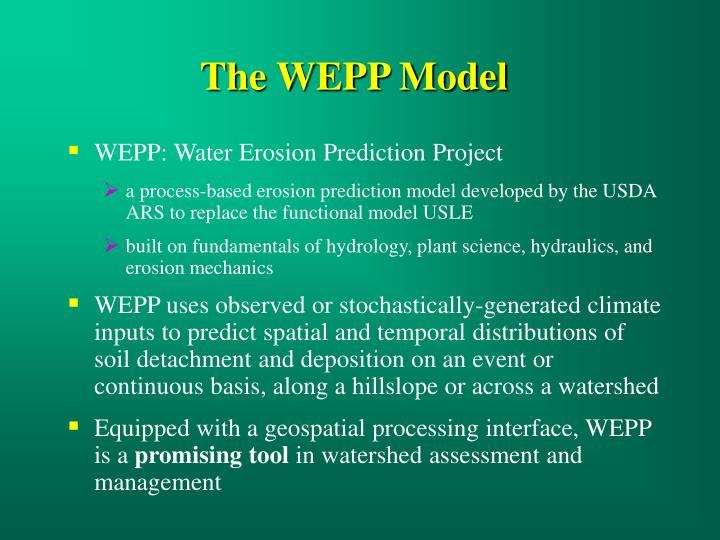 The WEPP Model