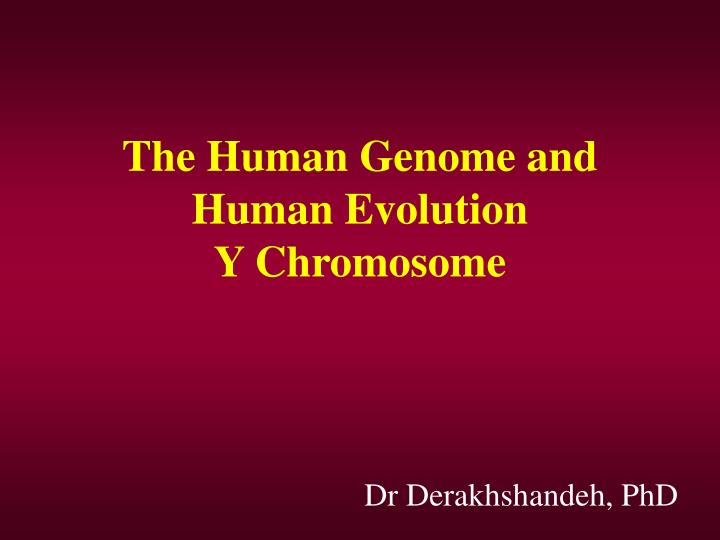 the human genome and human evolution y chromosome n.